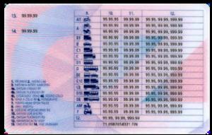řidičský průkaz zezadu